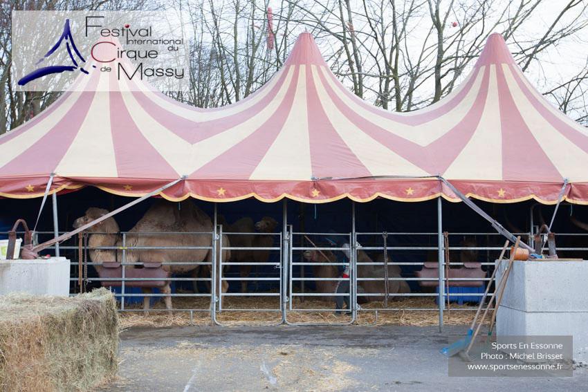 M60118A0027 - Chapiteau pour les chameaux et les lamas