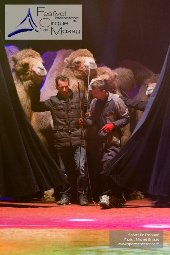 M60118A0281 - Steeve et Jon Caplot débutent la répétition avec leurs animaux
