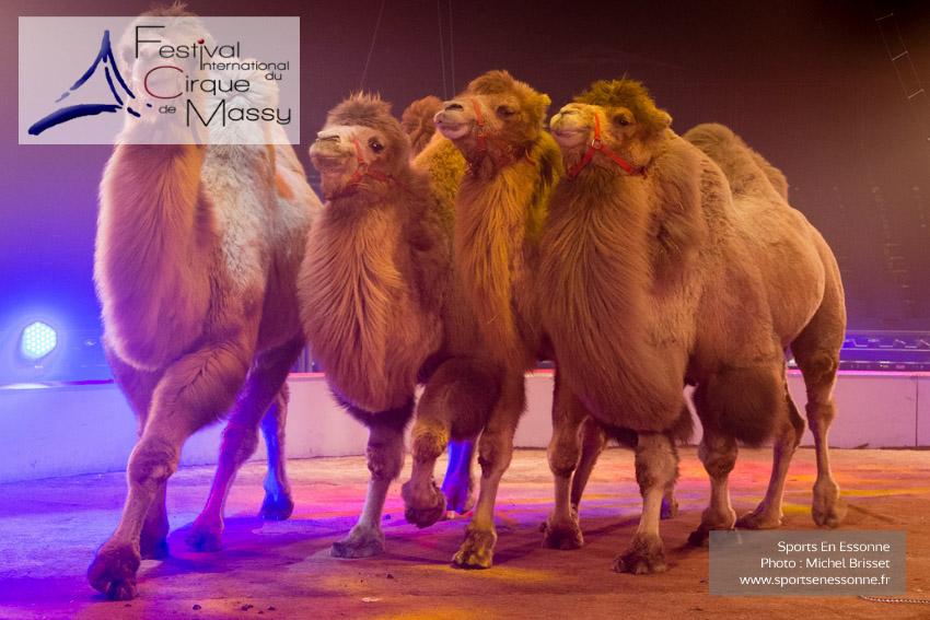 M60118A0362 - Passage groupé des chameaux de Jon Caplot