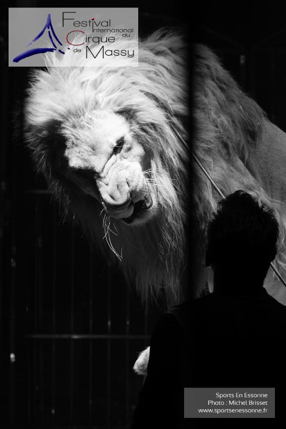 M60119A0753 - Lions - Steeve Caplot