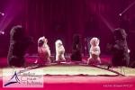 MB170111A0787 - Gina Giovanni - Dressage de chiens - Belgique