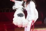 MB170113A0207 - Gina Giovanni - Dressage de chiens - Belgique