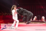 MB170113A0209 - Gina Giovanni - Dressage de chiens - Belgique