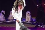 MB170113A0238 - Gina Giovanni - Dressage de chiens - Belgique