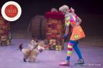 MB180113A1570-Duo Savitsky - Jeux de chats - Ukraine
