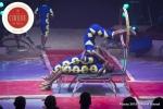 MB180114A2679-Troupe African Dream Circus - A travers les cerceaux – Éthiopie