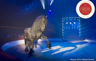 MB190110A1933-Louis KNIE - Carrousel équestre et chevaux en liberté