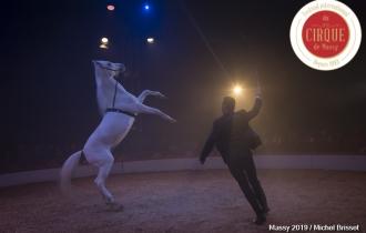 MB190112A2176-Louis KNIE - Carrousel équestre et chevaux en liberté