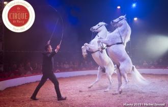 MB190112A2201-Louis KNIE - Carrousel équestre et chevaux en liberté