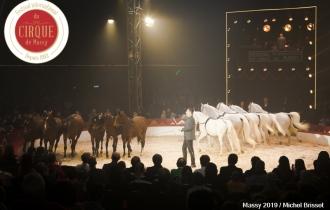 MB190112A4482-Louis KNIE - Carrousel équestre et chevaux en liberté