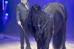 MB190110A0936-Louis KNIE - Carrousel équestre et chevaux en liberté