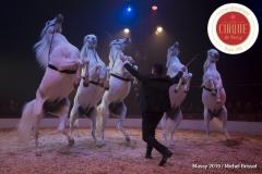 MB190110A3320-Louis KNIE - Carrousel équestre et chevaux en liberté