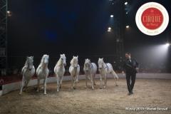 MB190112A2107-Louis KNIE - Carrousel équestre et chevaux en liberté