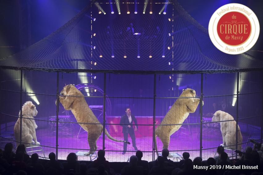 MB190110A2647-Tom DIECK JR - Lions & Tigres