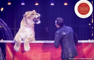 MB190111A0552-Tom DIECK JR - Lions & Tigres