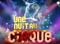 affiche-Une-nuit-au-cirque-3D--723x1024