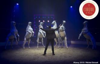 MB190110A2057-Louis KNIE - Carrousel équestre et chevaux en liberté