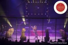 MB190110A2646-Tom DIECK JR - Lions & Tigres
