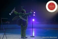 MB190112A1724-Totti Clown