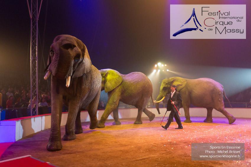 M60123A0959 - Ronald Spindler et ses Eléphants